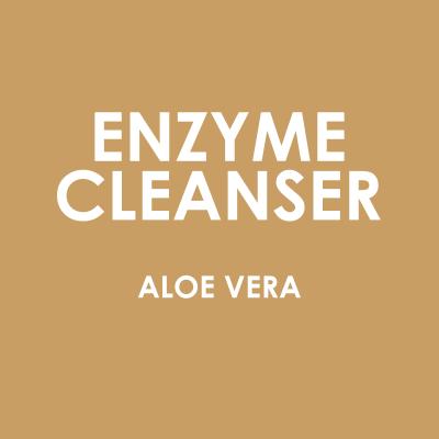 Ekologisk Aloe Vera Enzyme Cleanser